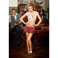 Schoolgirl RedWhteBlk Plaid Skirt (D)