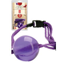 Ball Gag (Purple)